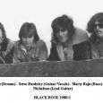 Black Rose 1980
