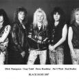 Black Rose 1987