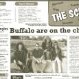 Buffalo Observer Article