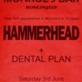 Hammerhead flyer