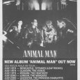 Rogue Male UK Tour